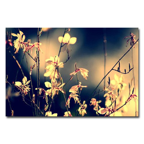"""Found it at Wayfair - """"Sunshine in My Garden"""" by Beata Czyzowska Young Photographic Print on Wrapped Canvas"""