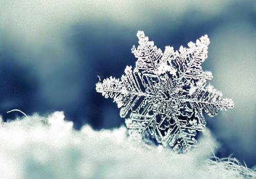 Fonds d'écran neige et hiver (fond d'écran) #decembrefondecran