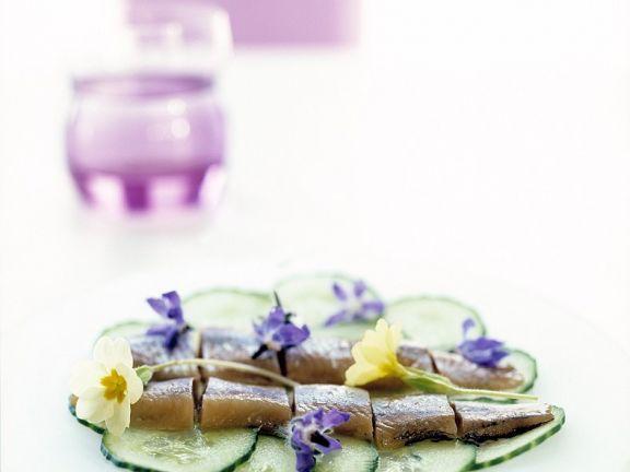 Matjes auf Gurkenscheiben ist ein Rezept mit frischen Zutaten aus der Kategorie Meerwasserfisch. Probieren Sie dieses und weitere Rezepte von EAT SMARTER!