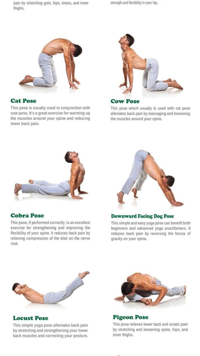 Health fitnes exercises