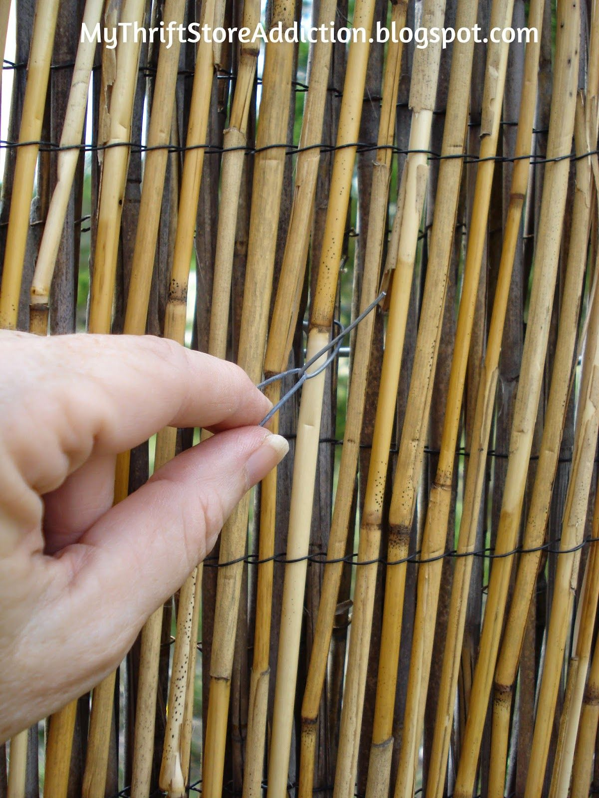 Diy Reed Fence Upgrade Reed Fencing Bamboo Fence Fence