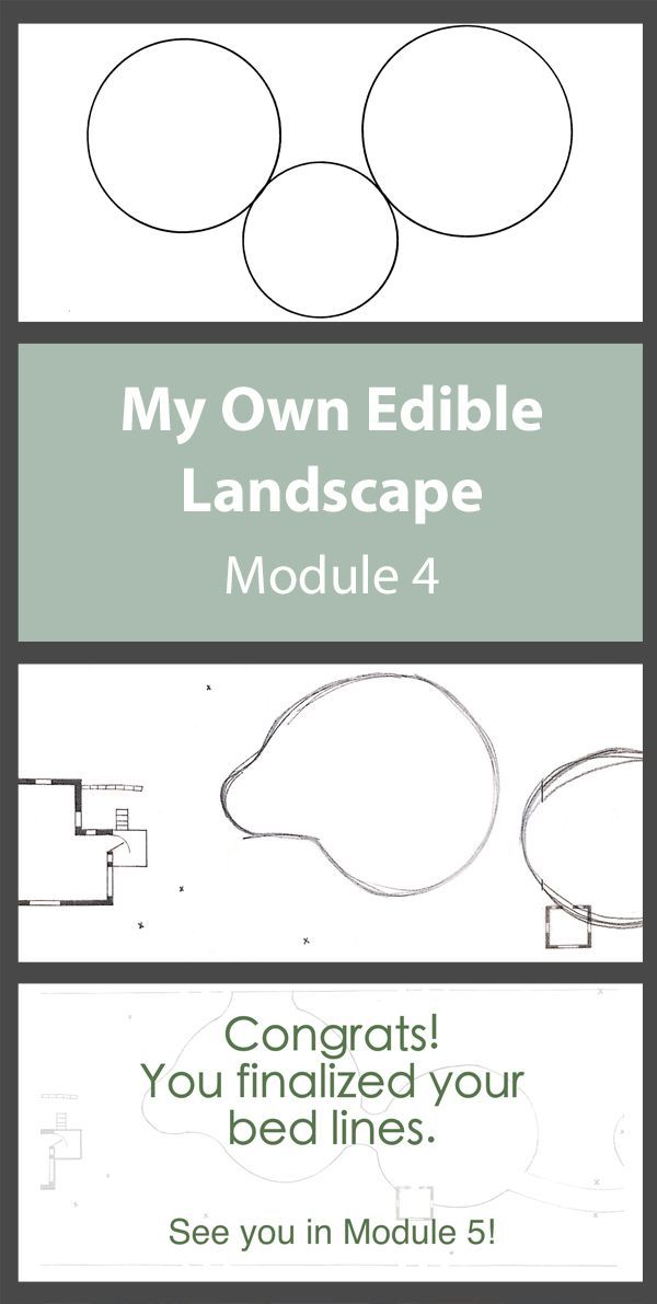 Pin by Edible Landscape Design & Design Education on My ...