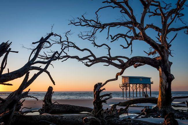 Delicieux Hunting Island State Park   Beaufort County South Carolina SC