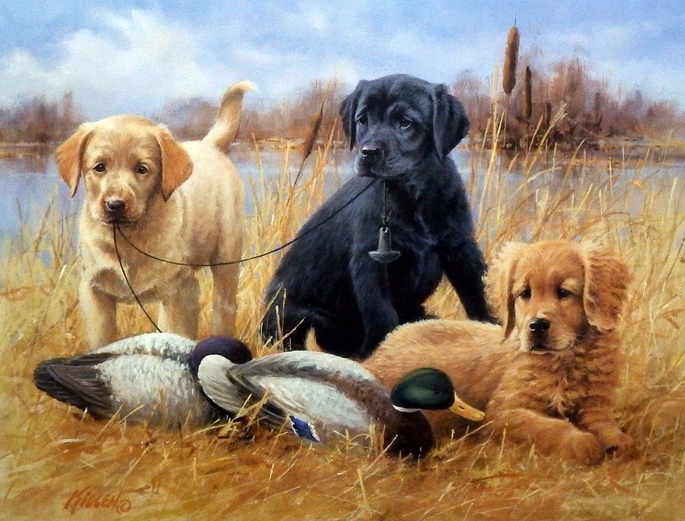 James Killen Faithful Friends Puppies Hunting Dogs Dog