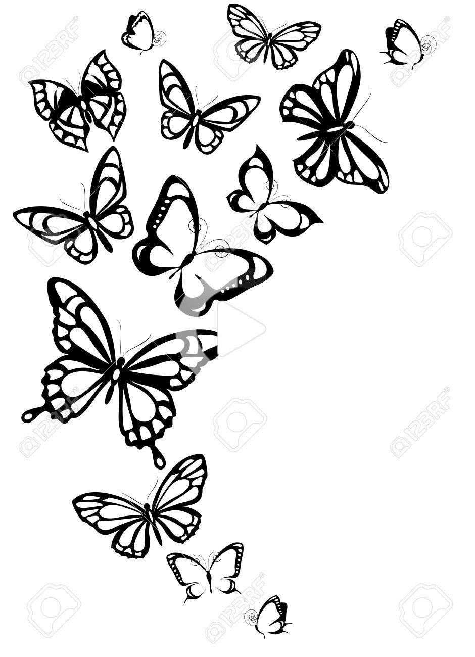 stock photo schmetterlingszeichnung schmetterling tattoo vorlage zeichnen butterfly drawing simple butterflies vektorgrafik dateiformat