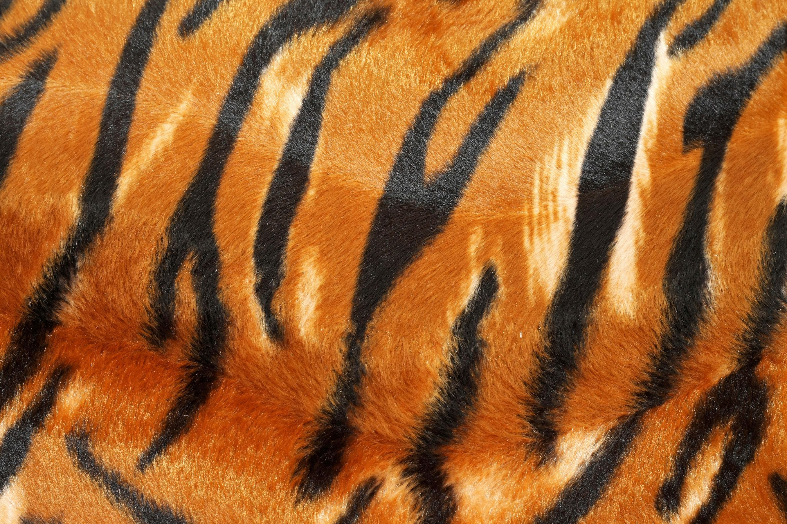 nice Tiger Pattern In HD | AmazingPict.com - Wallpapers in ... - photo#24