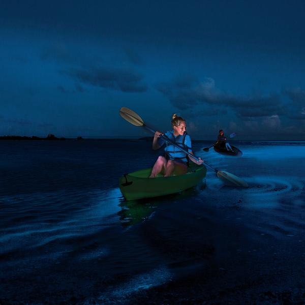 Exploring Puerto Rico S Bioluminescent Bays Discoverpuertorico Com Bioluminescent Bay Kayaking Puerto Rico