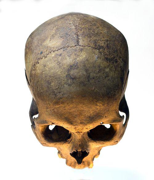 Pin by Tiler Makin on Skulls  c294402d1bb
