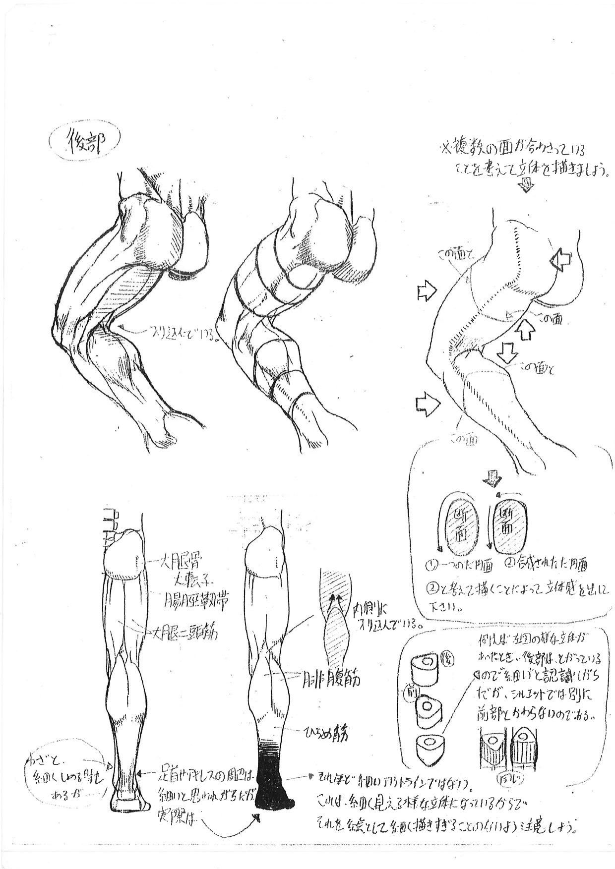 Capcom\'s Human Anatomical Reference For Artists | anatomy ...