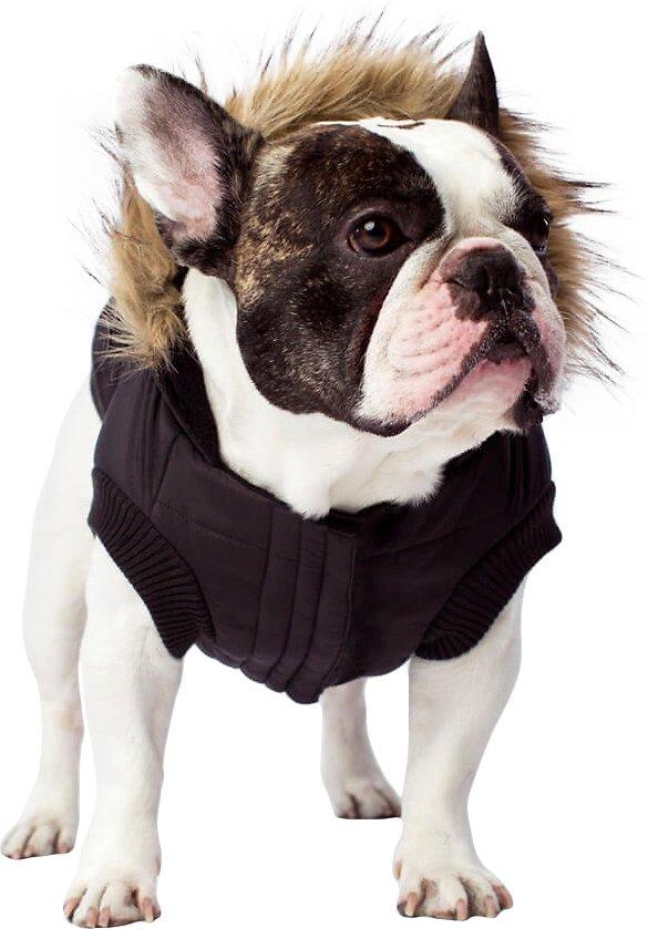 Canada Pooch North Pole Premium Dog Parka, Black, 10