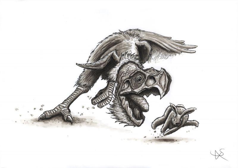 Vulture Hunt