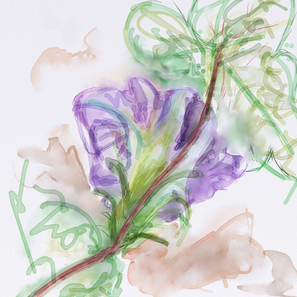 A morning glory #ArtRage #expressionism #digital #watercolour #art