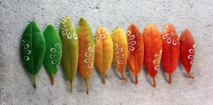 Blade med farver i alle neuancer.