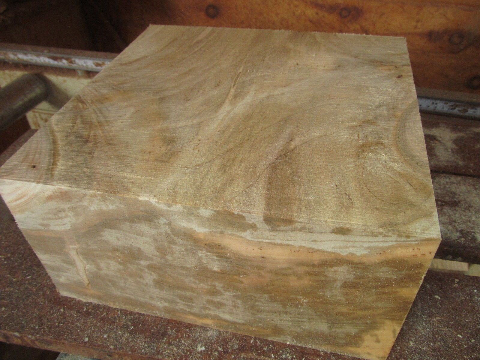 Large Curly Maple Bowl Blank Lumber Lathe Wood Turning 12 X 12 X 3 Ebay Wood Turning Sycamore Wood Wood