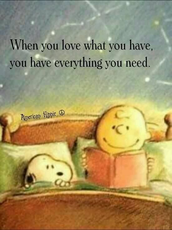 Image result for love what you have. need what..