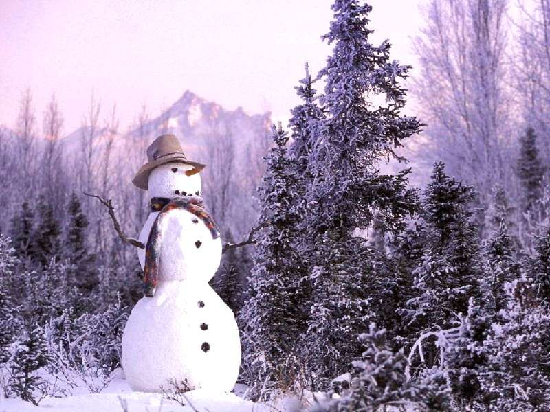 Frosty_Snowmanjpg (800×600) In the Meadow We Could Build a