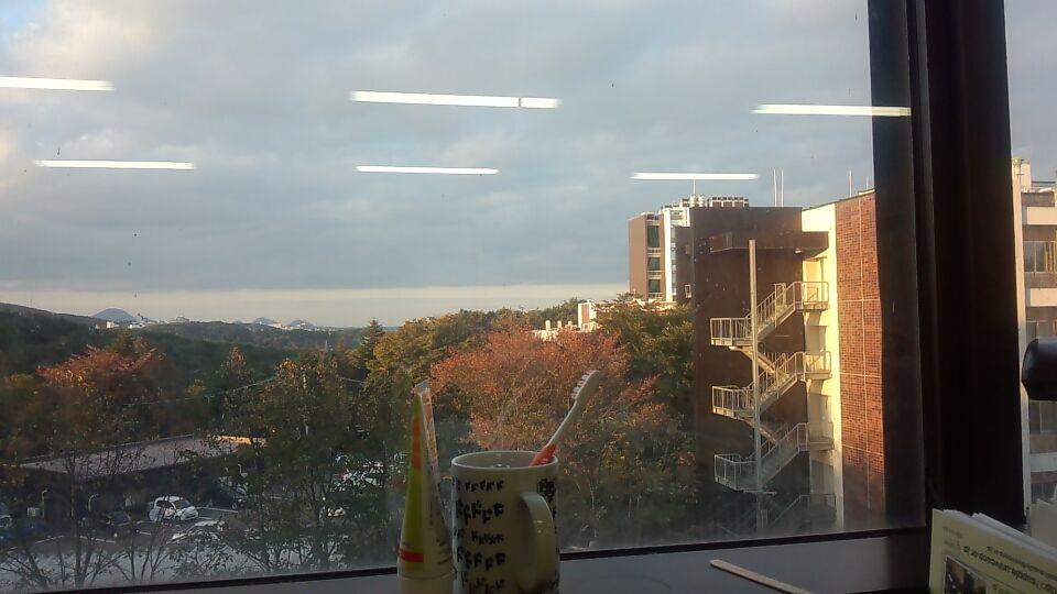 研究室からの風景