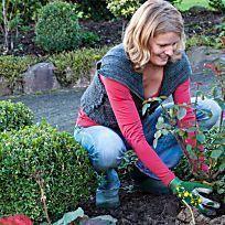 #hortensien #stecklinge #vermehren #beetrosen #pflanzen #herbst #durch #imHortensien durch Stecklinge vermehren Beetrosen im Herbst pflanzenBeetrosen im Herbst pflanzen #hortensienvermehren #hortensien #stecklinge #vermehren #beetrosen #pflanzen #herbst #durch #imHortensien durch Stecklinge vermehren Beetrosen im Herbst pflanzenBeetrosen im Herbst pflanzen #hortensienvermehren #hortensien #stecklinge #vermehren #beetrosen #pflanzen #herbst #durch #imHortensien durch Stecklinge vermehren Beetrose #hortensienvermehren