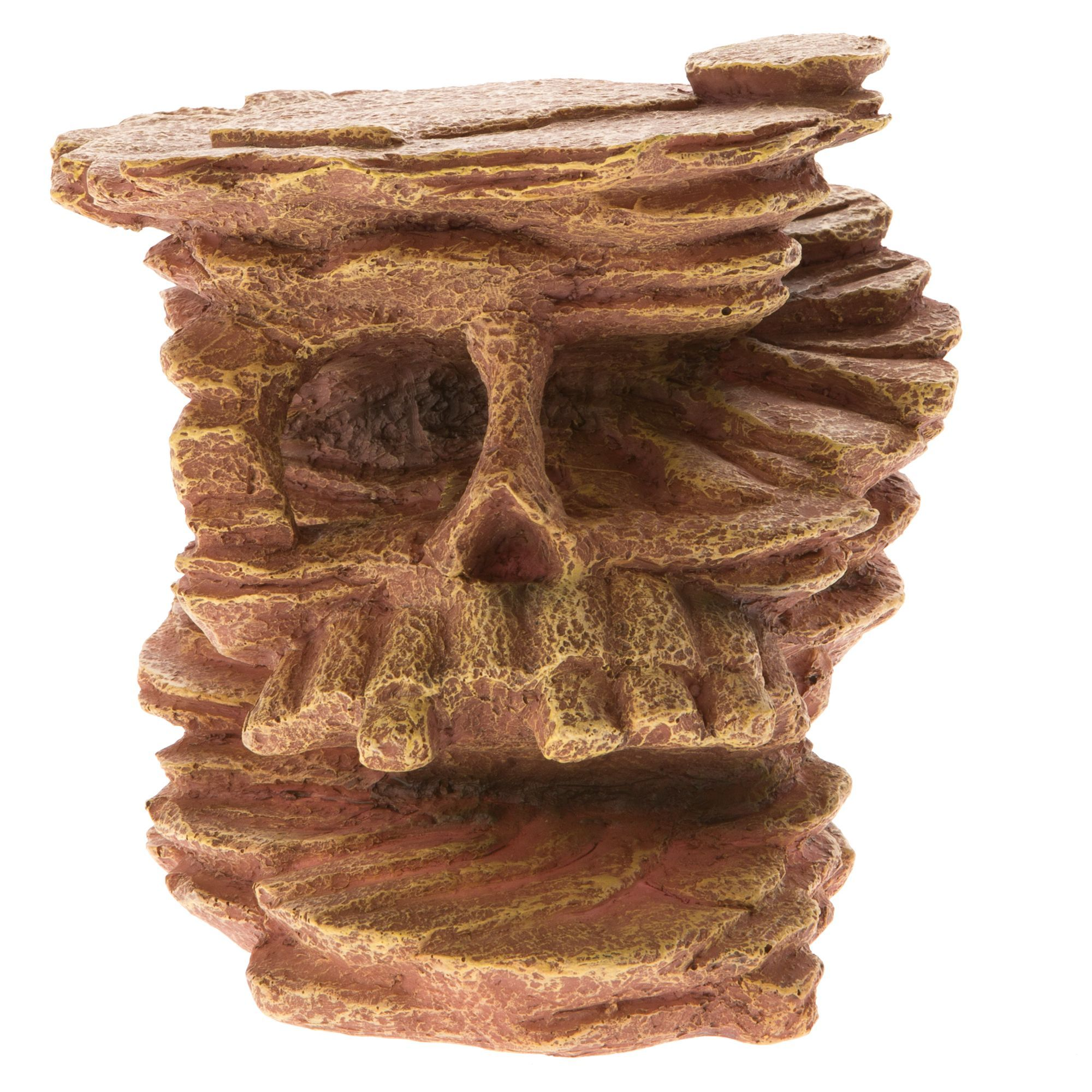All Living Things Skull Cave Reptile Ornament Bearded