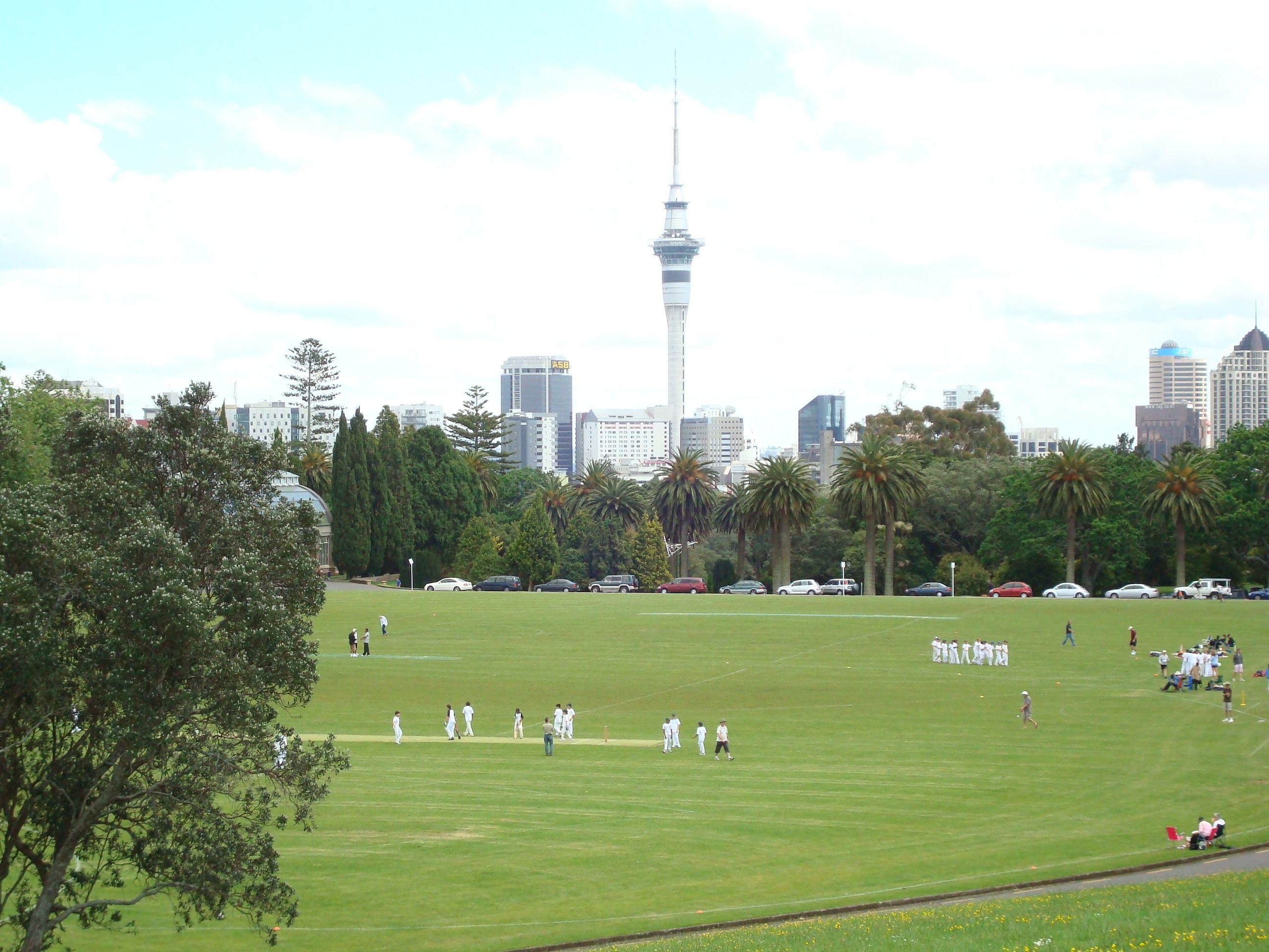 Kids cricket, Auckland NZ