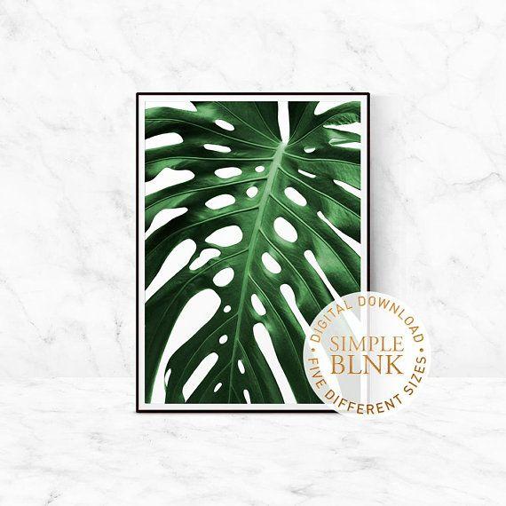 monstera greenery leaf photography leaf printable digital