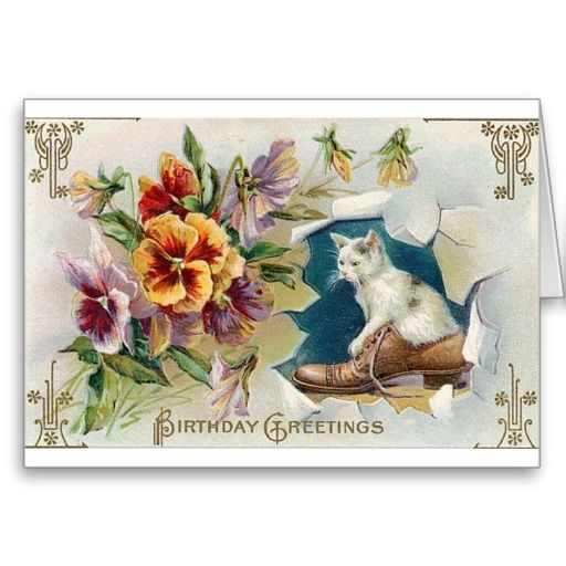 Cute . Kitten In Shoe Birthday Card