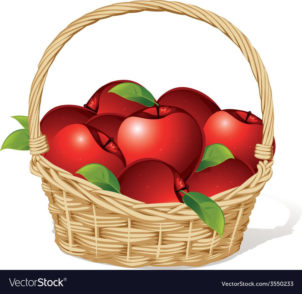 Red Apples In A Basket Isolated On White Vector Image On Vectorstock Red Apple Basket Apple