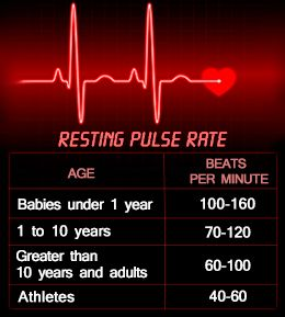 Charts For Resting Heart Rate  Heart Rate Chart And Medical