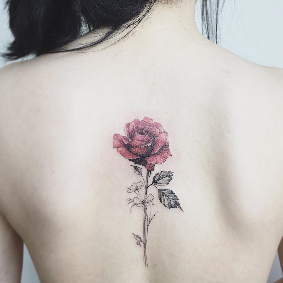 #tattoo#tattoos#tattooing#tattoowork#tattooart#armtattoo#colortattoo#art#artist#flowertattoo#flower#rosetattoo#타투#꽃타투#장미타투#타투이스트꽃#tattooistflower  rossssssssssse .