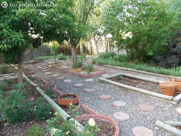 Landscaping without grass google search landscaping - Backyard ideas without grass ...
