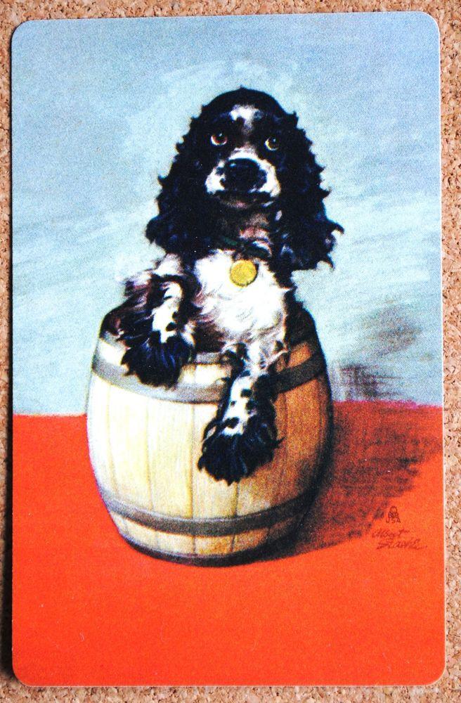 DOG - SPANIEL - BUTCH IN A BARREL- SINGLE VINTAGE SWAP PLAYING CARD…