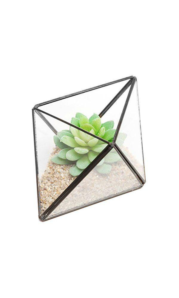 Modern Diamond Design Clear Faceted Succulent Air Plant Planter Box Pot Keepsake Display Bowl
