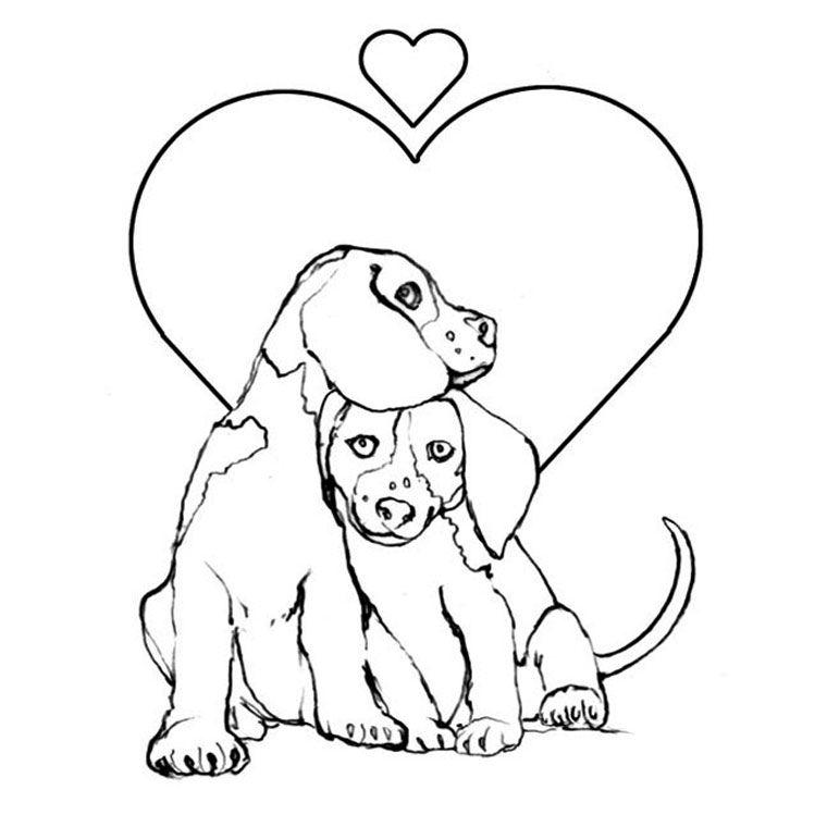 Coloriage Chien Et Chiot A Imprimer Gratuit Puppy Coloring