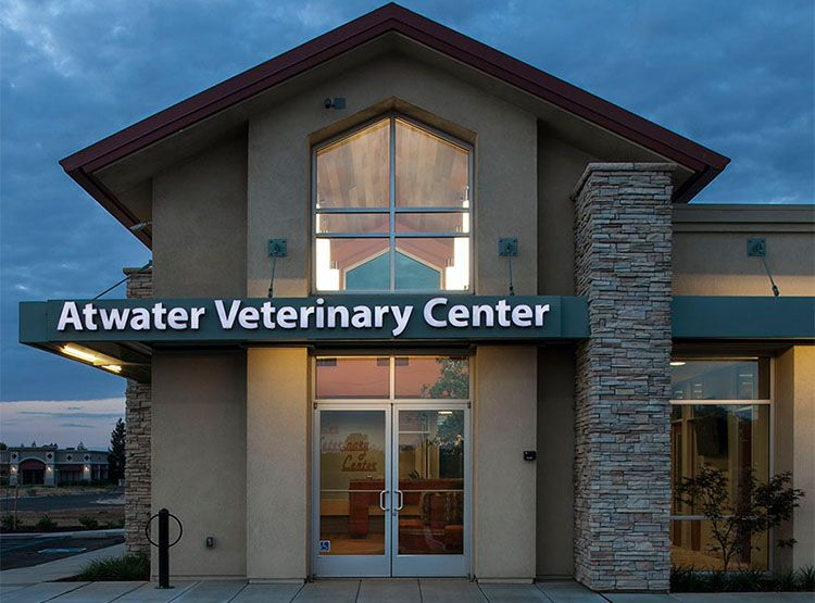 Veterinary Architecture Veterinary Hospital Design Atwater Veterinary Center Atwater Ca Hospital Design Shelter Design Animal Shelter Design