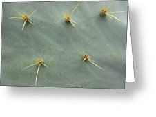 Feuille de cactus // Cactus Leaf Greeting Card by Dominique Fortier