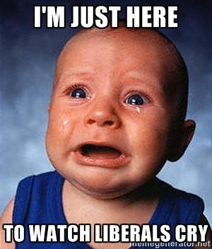 276878802d24b31d16c7daa80acd8371 i'm just here to watch liberals cry crying baby meme generator