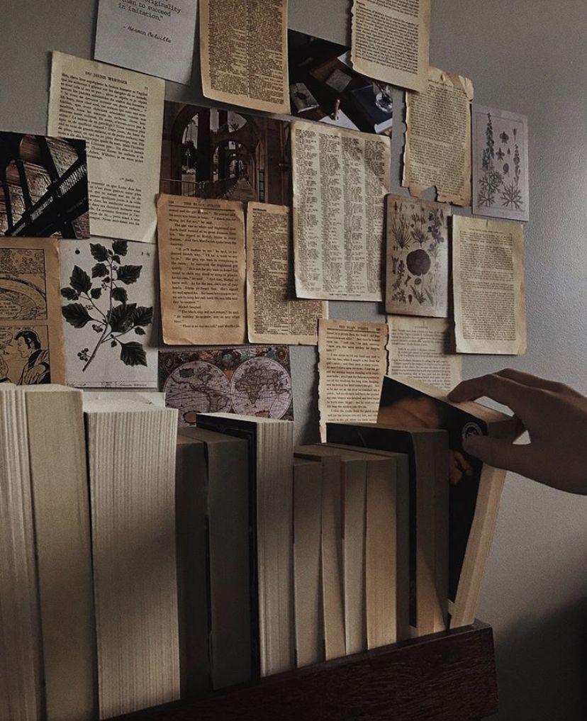 books, dark academia aesthetic, library, bookshelf, room ...