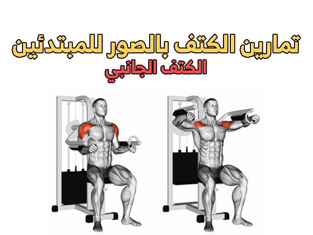 تمارين الكتف بالصور للمبتدئين Shoulder Workout Workout Shoulder
