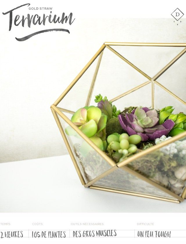 Geometric Terrarium With Straws Sweet Little Diy Random Ideas