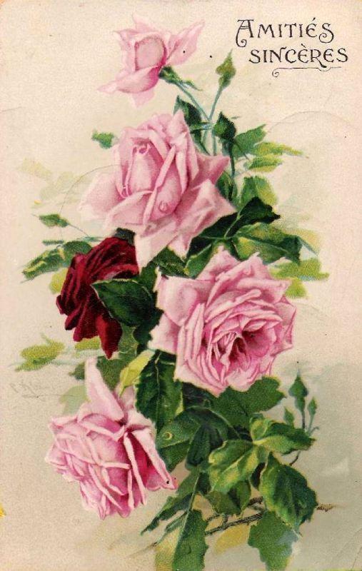 cartes postales anciennes et lithographies les roses de. Black Bedroom Furniture Sets. Home Design Ideas