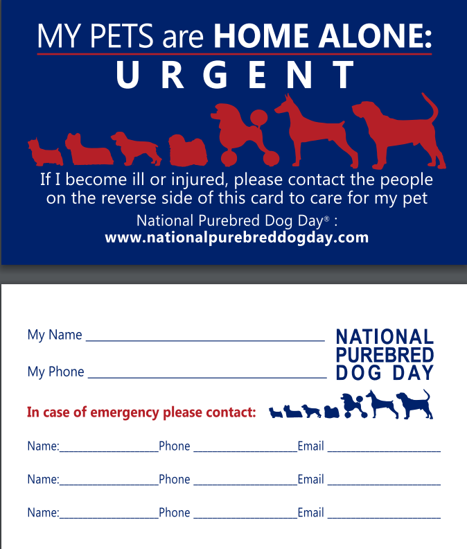 Handouts Freebies National Purebred Dog Day Dog Days Handouts Contact Card