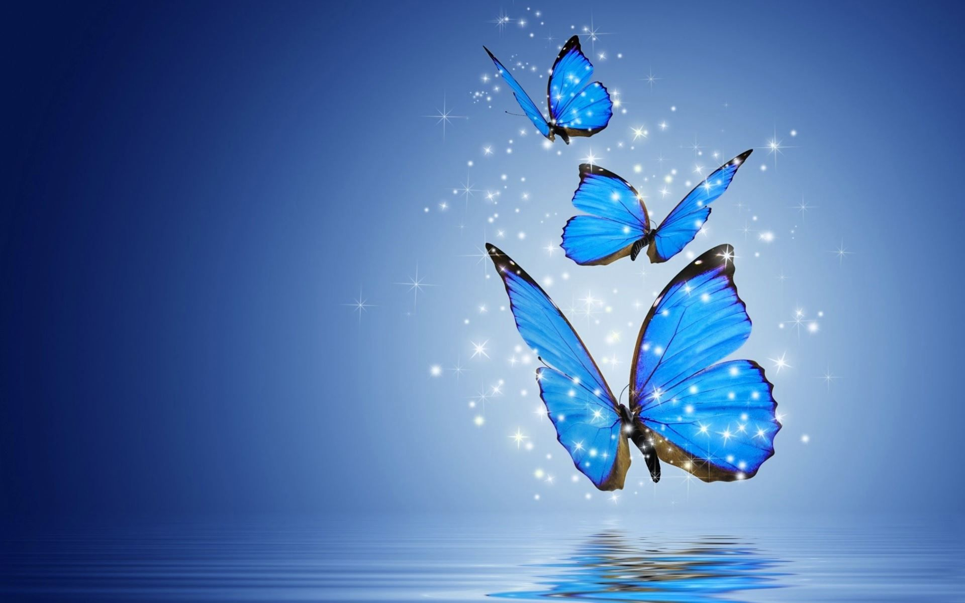 hd wallpapers for desktop butterflies Bing images