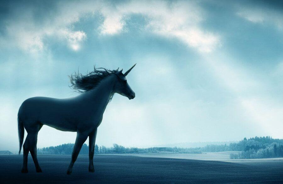 حصان يونيكورن قصاصات فنية 12