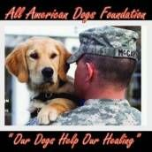 All American Dogs Helps Our Active Duty Veterans Their Families