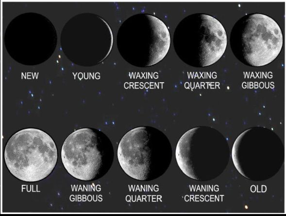 Moon Phases In Picture Waxing And Waning Crescent And Gibbous Picture Only Crescent Moon Tattoo Meaning Moon Phases Moon Goddess