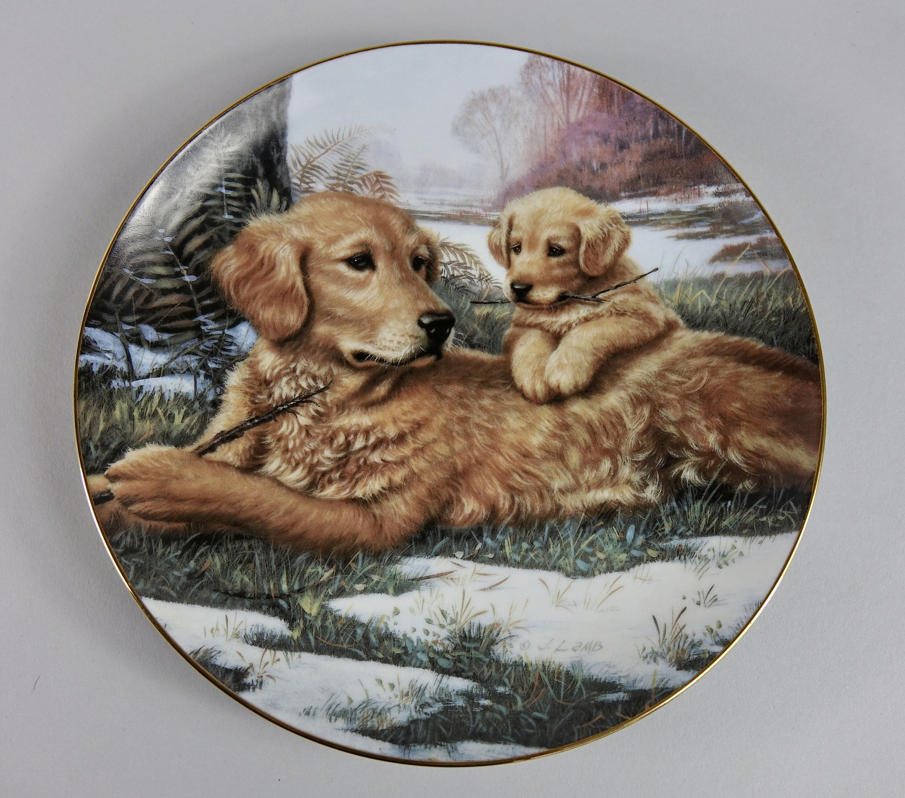 Golden Moments Collector Plate Sporting Generation Jim