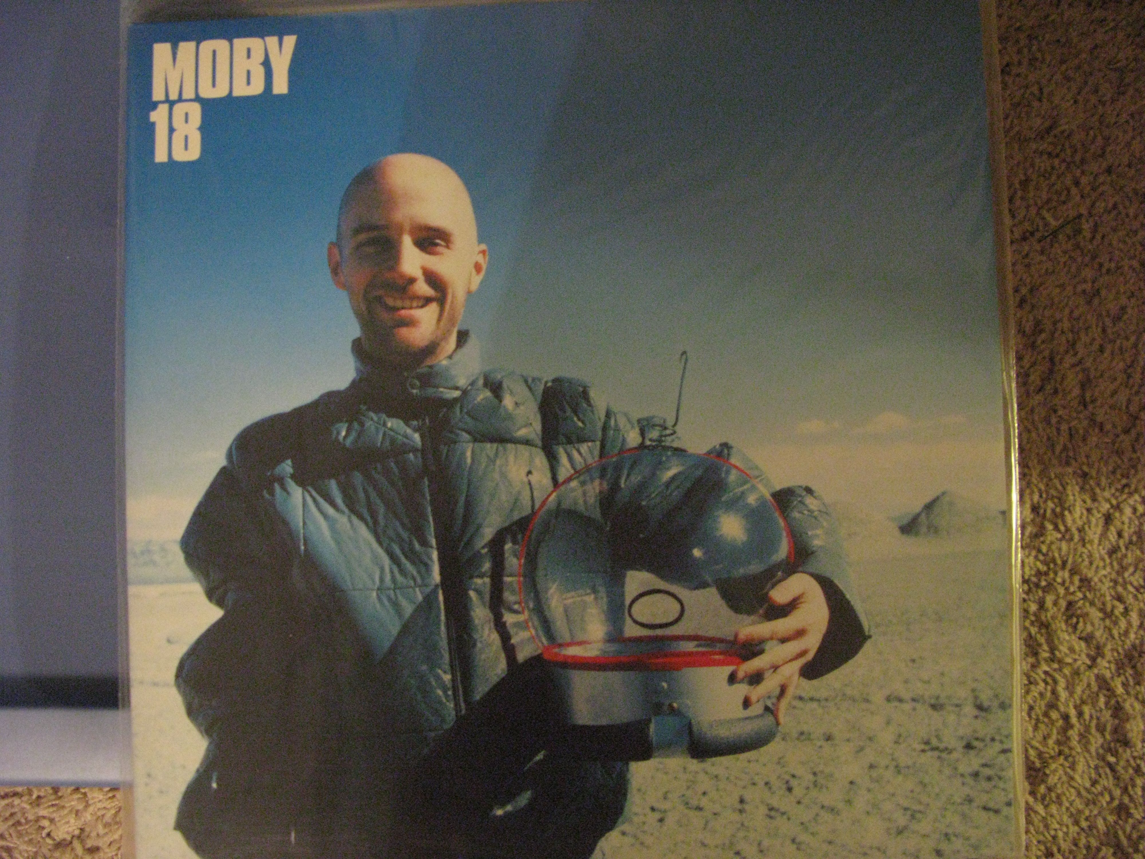 Moby 18 Vinyl Record Collection Painting Vinyl Records