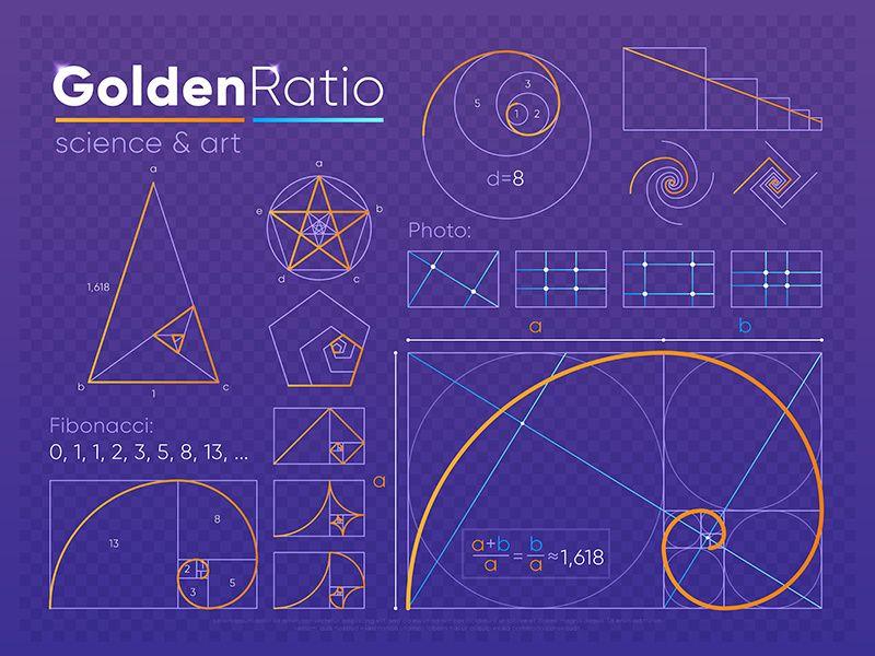 Golden Ratio in 2020 | Golden ratio, Golden ratio in ...