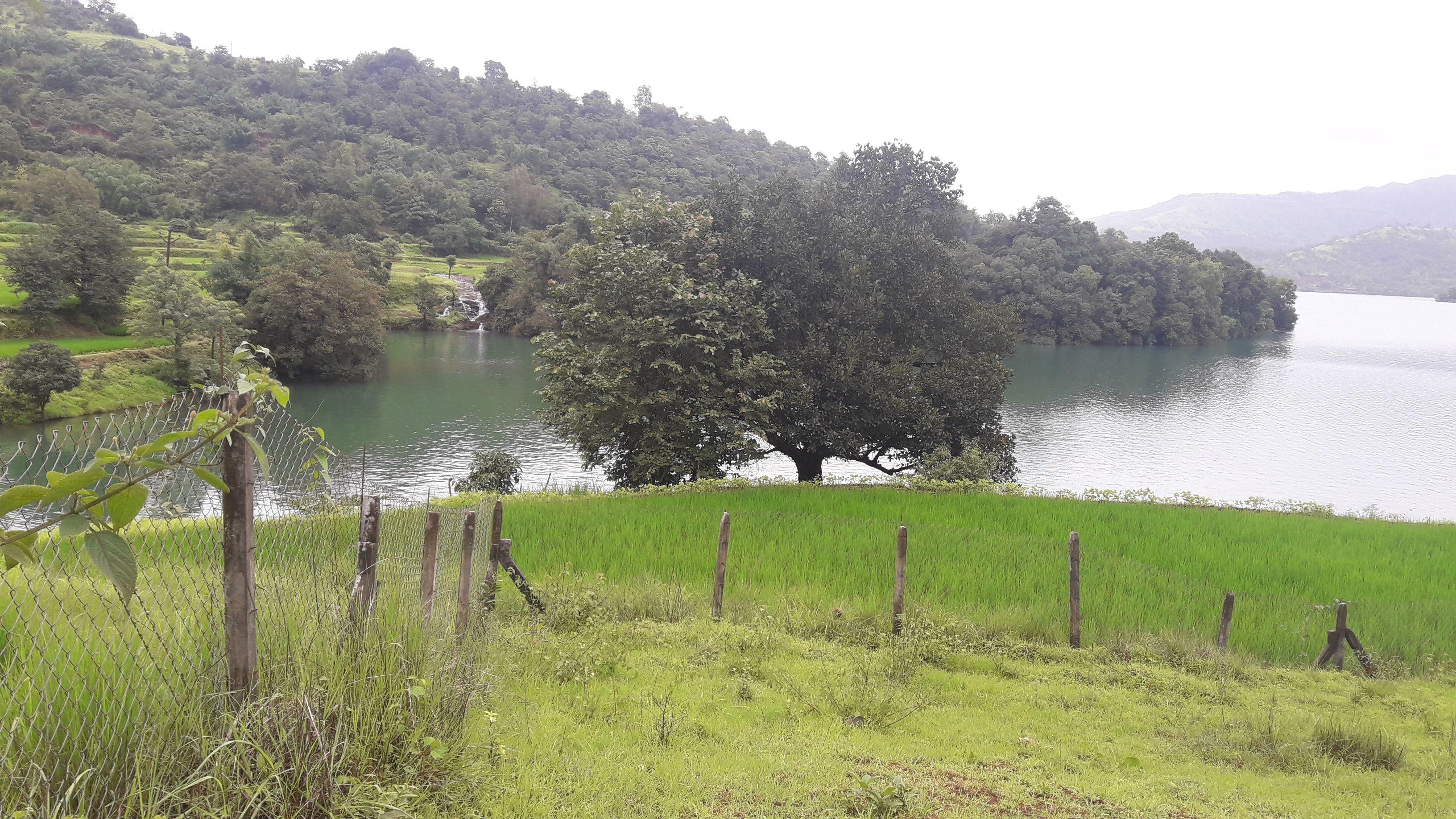 Agricultural Land for sale in Kasedi near Pune