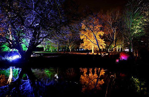 Enchanted Woodland At Syon House And Gardens